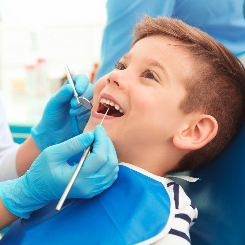 Особенности строения молочных зубов